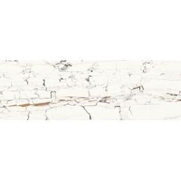 LEONARDO WHITE